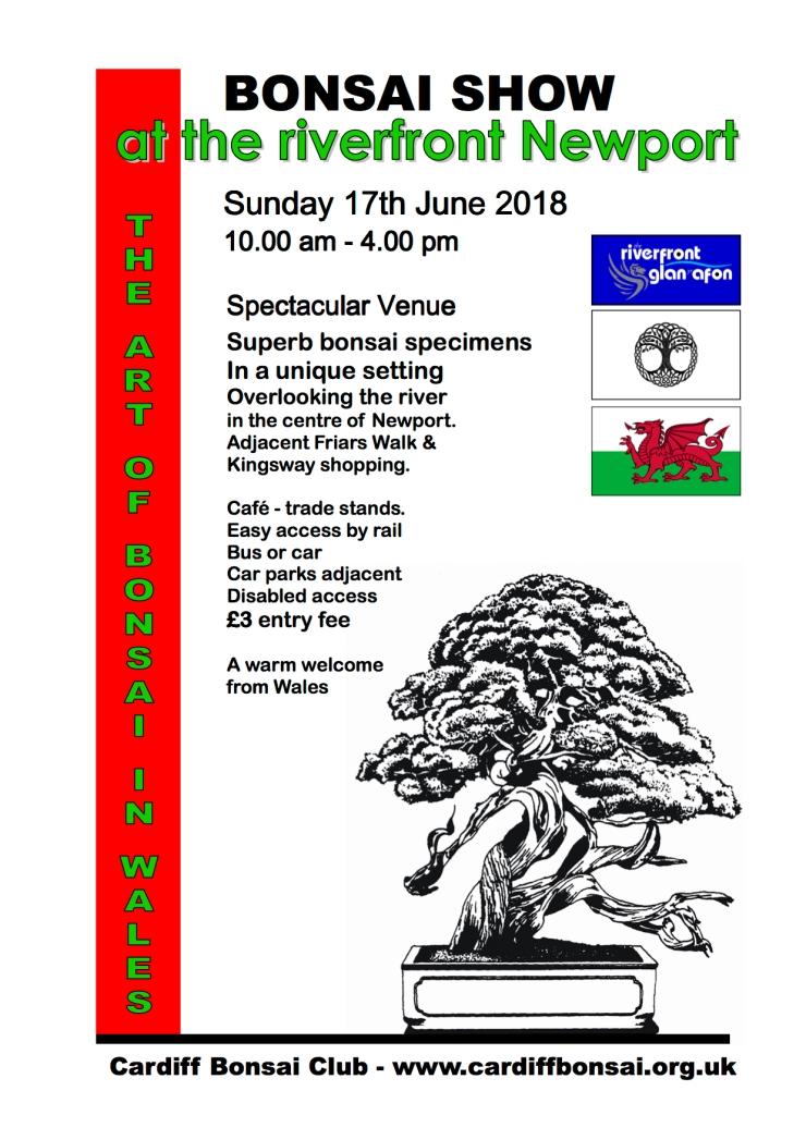 Cardiff flyer 2018